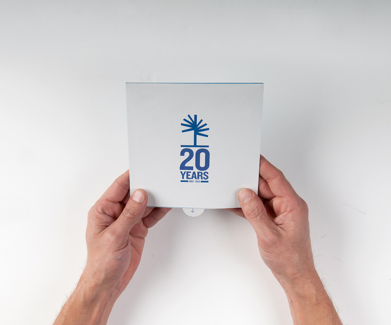 Palma Pictures- 20th anniversary